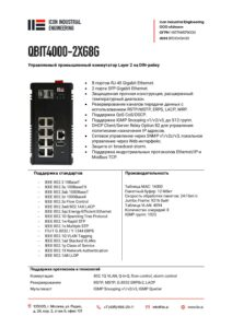 Icon Industrial qbit4000-2xg8g-pdf-212x300